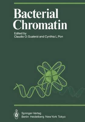 Bacterial Chromatin