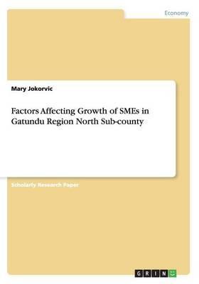 Factors Affecting Growth of Smes in Gatundu Region North Sub-County
