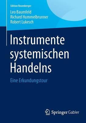 Instrumente Systemischen Handelns: Eine Erkundungstour