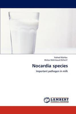 Nocardia Species