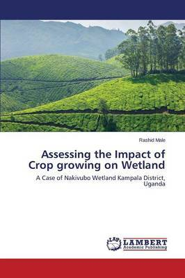 Assessing the Impact of Crop Growing on Wetland
