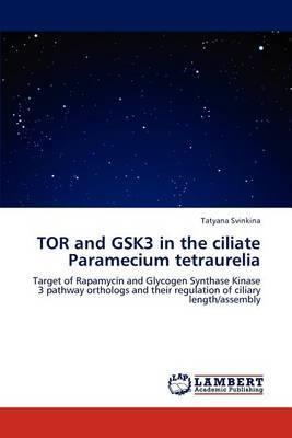 Tor and Gsk3 in the Ciliate Paramecium Tetraurelia