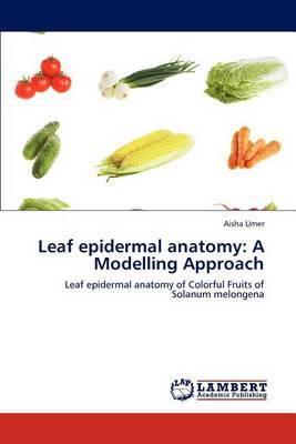 Leaf Epidermal Anatomy: A Modelling Approach
