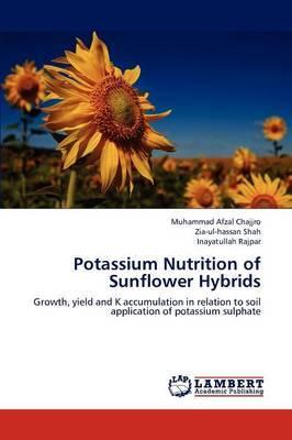 Potassium Nutrition of Sunflower Hybrids