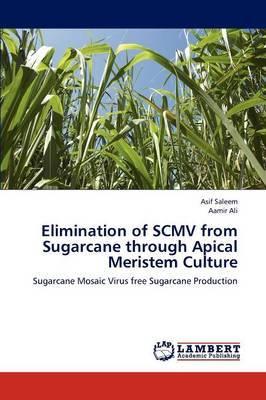 Elimination of Scmv from Sugarcane Through Apical Meristem Culture