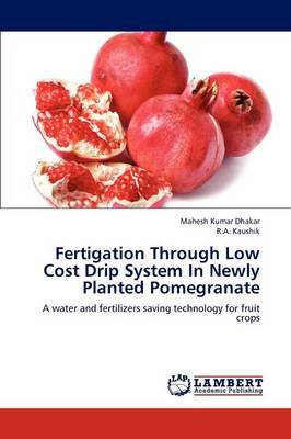 Fertigation Through Low Cost Drip System in Newly Planted Pomegranate