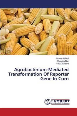Agrobacterium-Mediated Transformation of Reporter Gene in Corn