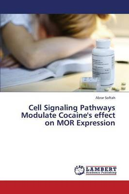 Cell Signaling Pathways Modulate Cocaine's Effect on Mor Expression