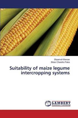 Suitability of Maize Legume Intercropping Systems