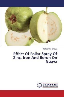 Effect of Foliar Spray of Zinc, Iron and Boron on Guava