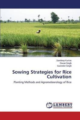 Sowing Strategies for Rice Cultivation