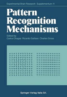Pattern Recognition Mechanisms