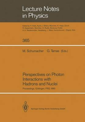 Perspectives on Photon Interactions with Hadrons and Nuclei: Proceedings of a Workshop Held at Gottingen, Frg on 20 and 21 February 1990