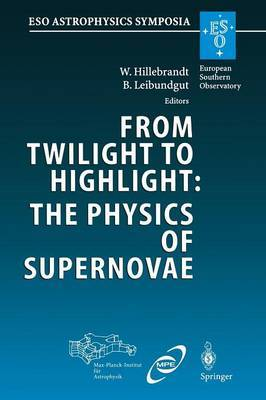 From Twilight to Highlight: The Physics of Supernovae: Proceedings of the ESO/MPA/MPE Workshop Held at Garching, Germany, 29-31 July 2002