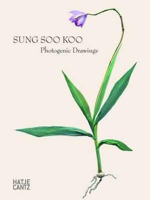 Sung Soo Koo: Photogenic Drawings