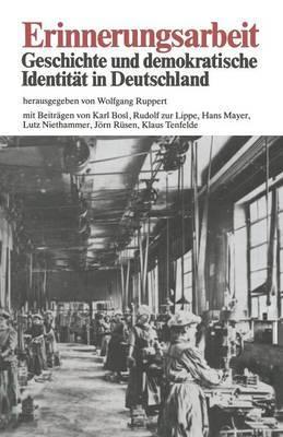 Erinnerungsarbeit: Geschichte Und Demokratische Identitat in Deutschland