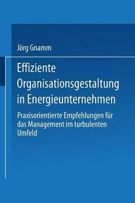 Effiziente Organisationsgestaltung in Energieunternehmen: Praxisorientierte Empfehlungen Fur Das Management Im Turbulenten Umfeld