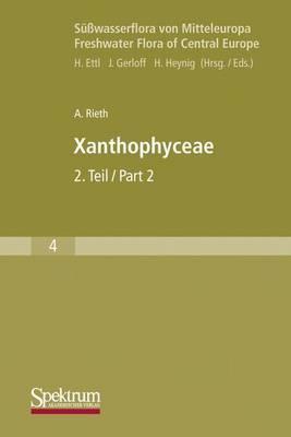 Susswasserflora Von Mitteleuropa, Bd. 04: Xanthophyceae 2