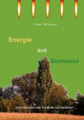 Energie Aus Biomasse