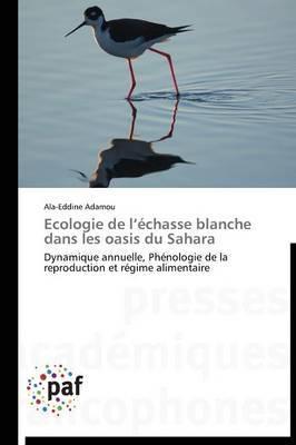 Ecologie de L Echasse Blanche Dans Les Oasis Du Sahara