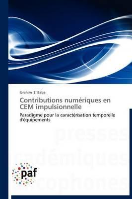 Contributions Numeriques En Cem Impulsionnelle