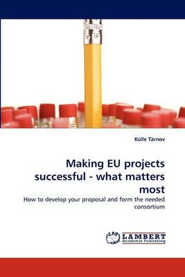 Making Eu Projects Successful - What Matters Most