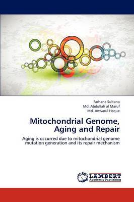 Mitochondrial Genome, Aging and Repair