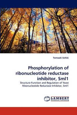 Phosphorylation of Ribonucleotide Reductase Inhibitor, Sml1