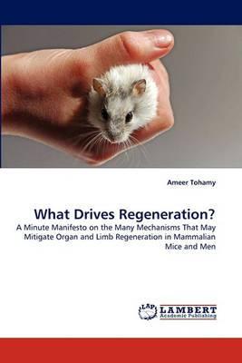 What Drives Regeneration?