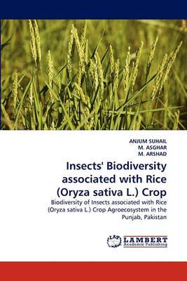 Insects' Biodiversity Associated with Rice (Oryza Sativa L.) Crop