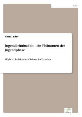 Jugendkriminalitat - Ein Phanomen Der Jugendphase.