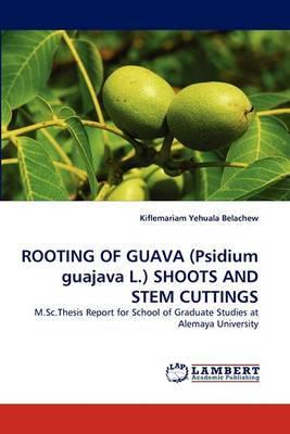 Rooting of Guava (Psidium Guajava L.) Shoots and Stem Cuttings