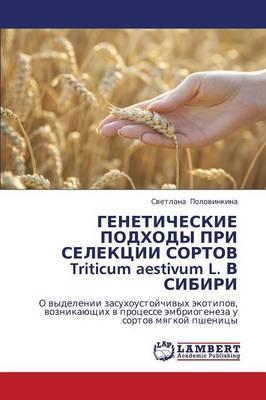 Geneticheskie Podkhody Pri Selektsii Sortov Triticum Aestivum L. V Sibiri
