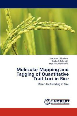 Molecular Mapping and Tagging of Quantitative Trait Loci in Rice