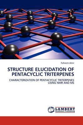 Structure Elucidation of Pentacyclic Triterpenes