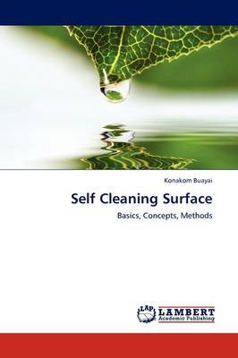 Self Cleaning Surface