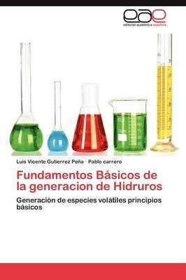 Fundamentos Basicos de La Generacion de Hidruros