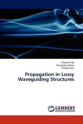 Propagation in Lossy Waveguiding Structures