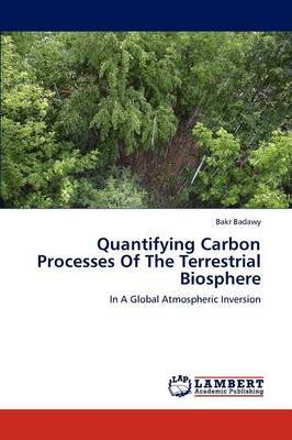 Quantifying Carbon Processes of the Terrestrial Biosphere