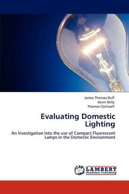 Evaluating Domestic Lighting