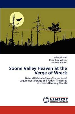 Soone Valley Heaven at the Verge of Wreck