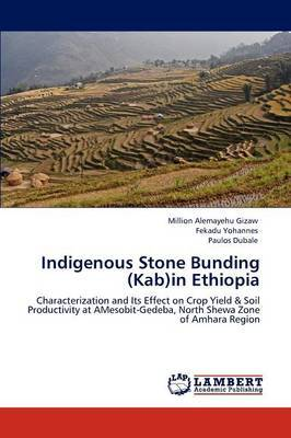 Indigenous Stone Bunding (Kab)in Ethiopia