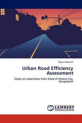 Urban Road Efficiency Assessment