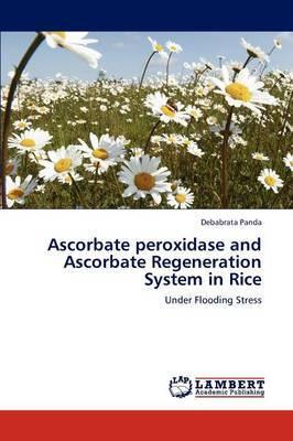 Ascorbate Peroxidase and Ascorbate Regeneration System in Rice