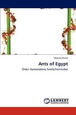 Ants of Egypt