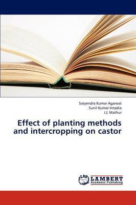 Effect of Planting Methods and Intercropping on Castor