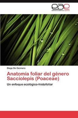 Anatomia Foliar del Genero Sacciolepis (Poaceae)
