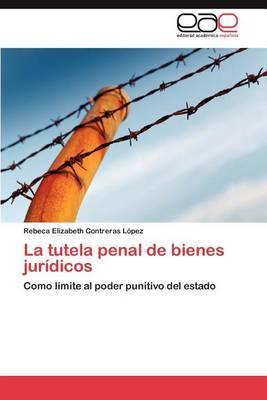 La Tutela Penal de Bienes Juridicos