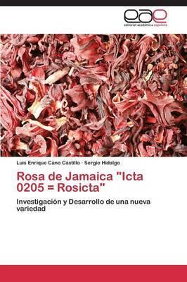 Rosa de Jamaica  Icta 0205 = Rosicta