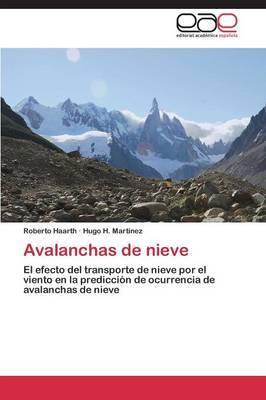 Avalanchas de Nieve